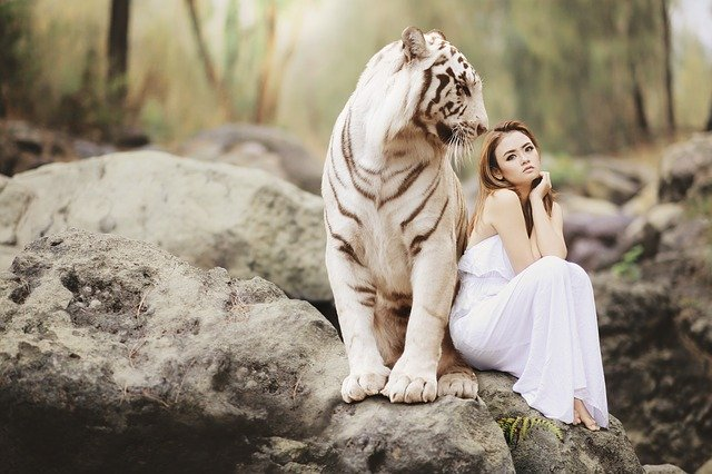 žena s tygrem